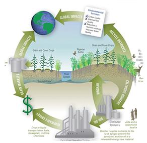 Thumbnail diagram of CenUSA process.