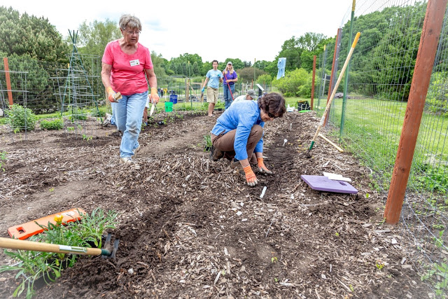Master Gardner class participants working in garden