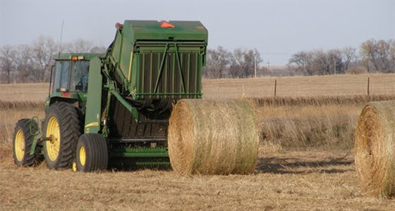 Bales being harvested