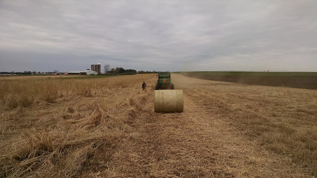 Hay bale in the middle of field