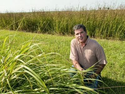 Ken Moore posing in the field with grasses