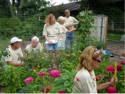 Master Gardeners studying biochar's impact on garden plots
