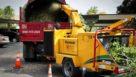 Equipment taking in plant material and processing it into the back of a truck